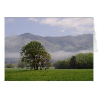 Cartes Pré brumeux et montagne riche, crique de Cades,