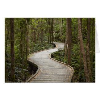Cartes Promenade aux automnes du Nelson, Franklin -