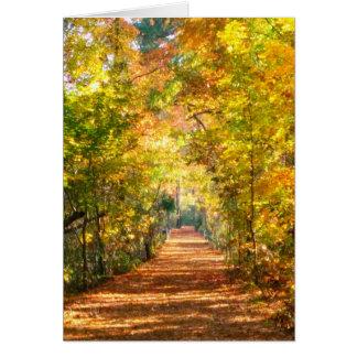 Cartes Promenade d'automne par les bois