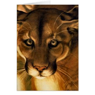 Cartes Puma - puma - puma