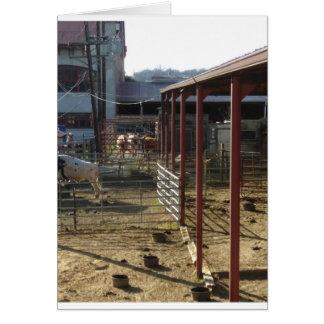Cartes Ranch