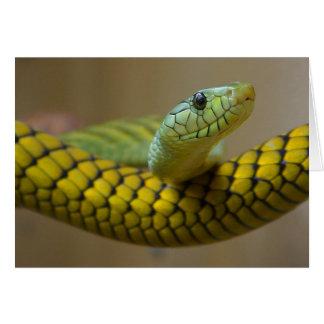 Cartes Reptile de serpent