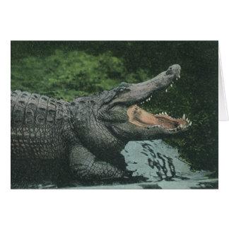 Cartes Reptiles vintages de crocodile, faune marine