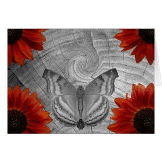Cartes Rêve de papillon