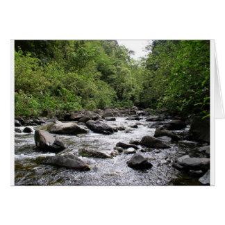 Cartes Rivière d'Iao, Maui, Hawaï