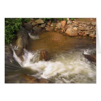Cartes Rivière humide et sauvage dans les Rocheuses