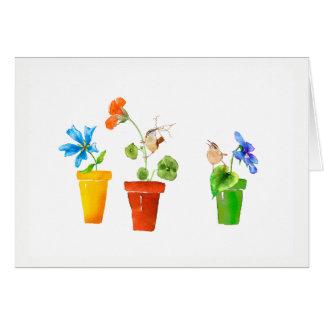 Cartes Roitelets et pots de fleurs