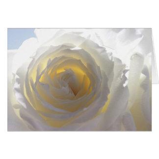Cartes Rose blanc élégant