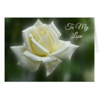 Cartes Rose blanc Valentine