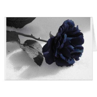 Cartes Rose de bleu