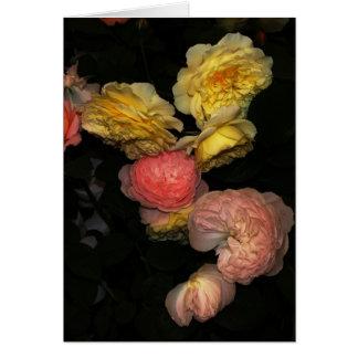 Cartes Roses