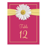 Cartes roses de Tableau de marguerite de Shasta de Carte Postale