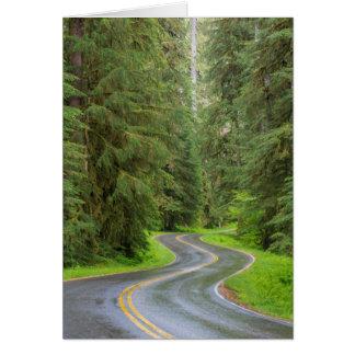 Cartes Route de rivière de solénoïde Duc par la forêt