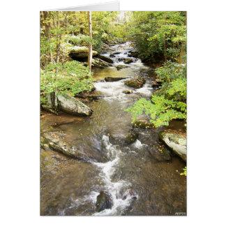 Cartes Ruisseau de bavardage