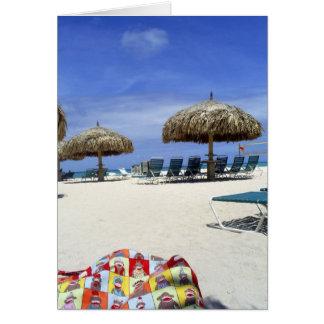 Cartes Sac de singe de chaussette dans Aruba à la plage