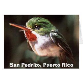 Cartes San Pedrito, San Pedrito, Porto Rico