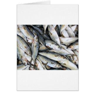 Cartes Sardines
