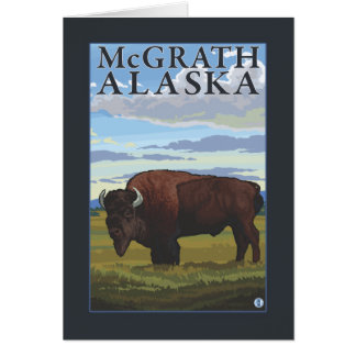 Cartes Scène de bison - McGrath, Alaska