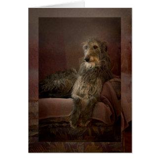 Cartes Scottish deerhound on a sofa