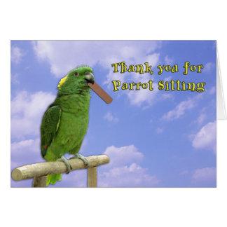 Cartes Séance de perroquet de Merci