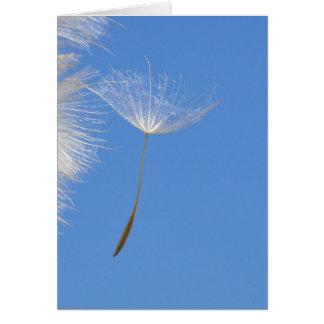 Cartes Sentez librement - la graine de pissenlit de vol