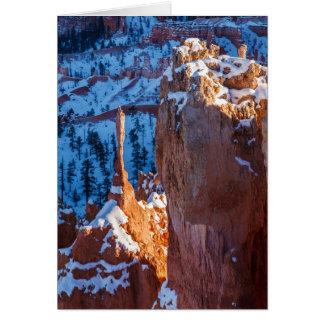Cartes Sentinelle d'hiver