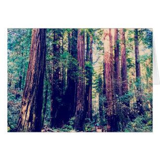 Cartes Séquoias de Californie