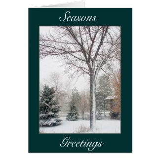Cartes Sérénité dans la tempête de neige