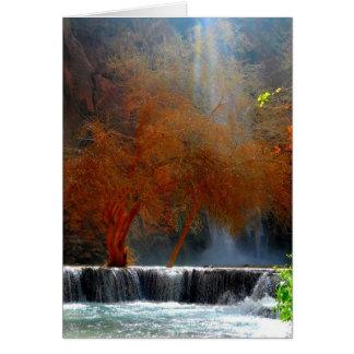 Cartes Sérénité de cascade