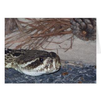 Cartes serpent à sonnettes de dos en forme de losange