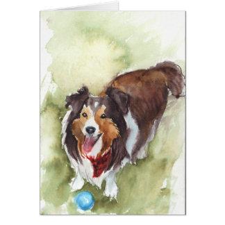 Cartes Sheltie/carte de voeux de chien moutons de