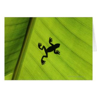 Cartes Silhouette de grenouille par la feuille de banane