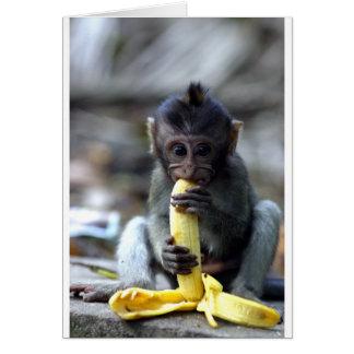 Cartes Singe de macaque mignon de bébé mangeant la banane