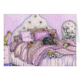 Cartes Sleepover - whippets et lévriers en abondance !