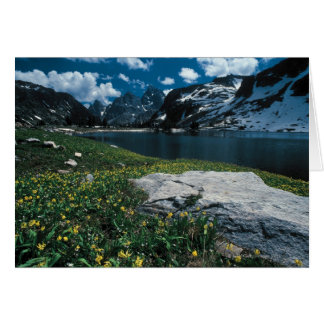 Cartes Solitude de lac, parc national grand de Teton,