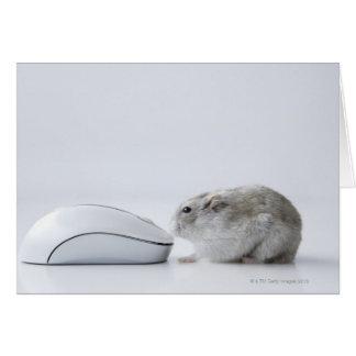 Cartes Souris de hamster et d'ordinateur