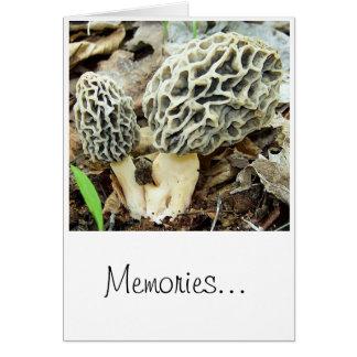 Cartes Souvenirs de champignon de morelle