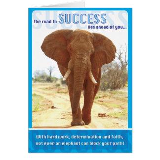 Cartes Succès d'éléphant