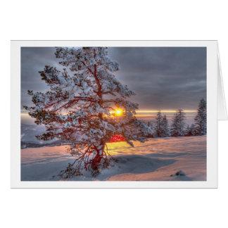 Cartes Sunset dans les Black Forest the
