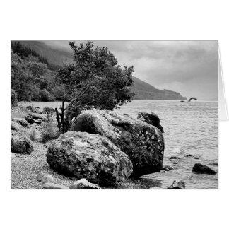 Cartes Sur les rivages de Loch Ness avec le monstre