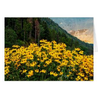 Cartes Susans Noir-eyed en montagnes