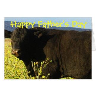 Cartes Taureaux heureux de bétail de ferme de ranch de
