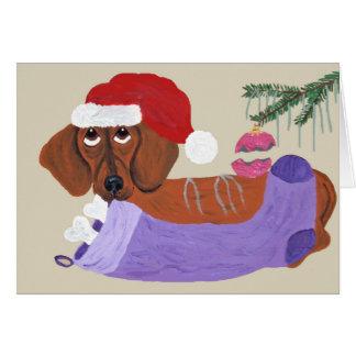 Cartes Teckel avec le bas de Noël