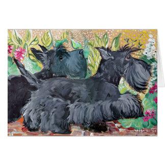 Cartes Terriers d'écossais de jardin