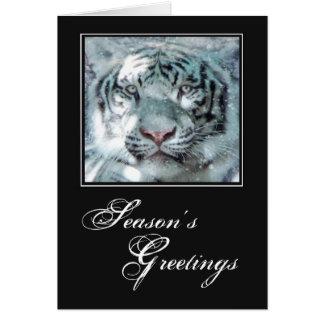 Cartes Tigre de blanc de neige de Noël