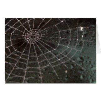 Cartes Toile d'araignée en verre