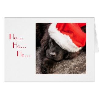 Cartes Tous habillés pour Noël
