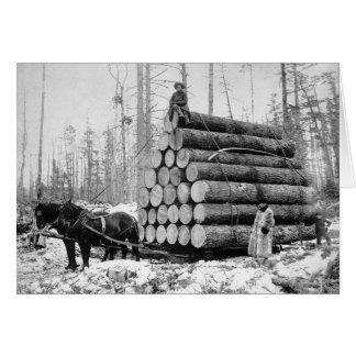 Cartes Transport d'une charge de Logs, 1908