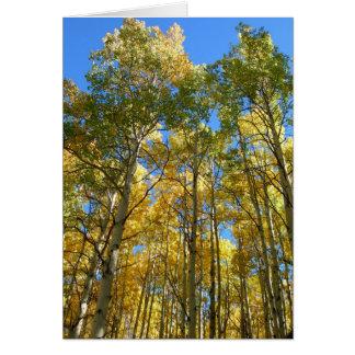 Cartes Trembles en automne