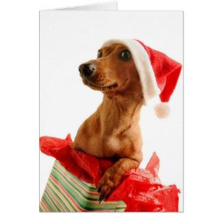 Cartes Très Noël de Doxie